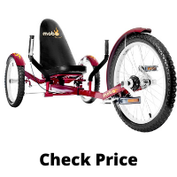 Mobo Triton Mature Tricycle for Adult Men & Ladies