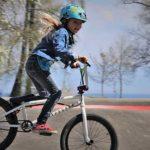 Best Bmx Bikes Under $300-$400