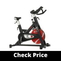 Sunny Evolution Pro II Magnetic Indoor Cycling Bike